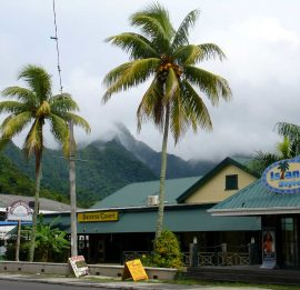 SCREEN-COOK-ISLANDS-DESTINATIONS-RISING-Merry-CHristmas-Mr-LAWRENCE-banana court