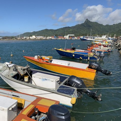 Screen-Cook-Islands-Destinations-Rising-fisherman wharf1