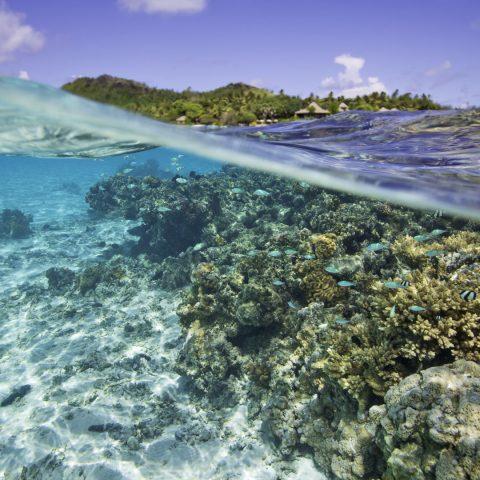 screen-cook-islands-destinations-rising-locations-49